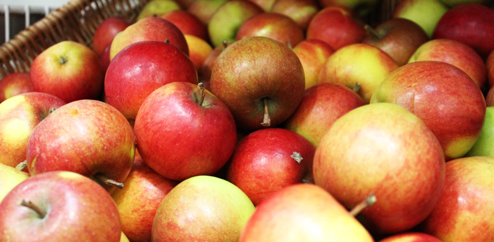 Apples in the Pippin gift shop