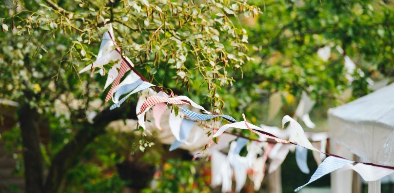 Bunting on trees